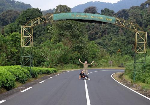 getting to nyungwe forest rwanda