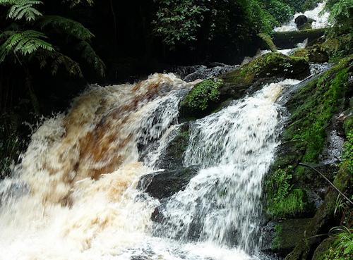 isumo falls rwanda nyungwe